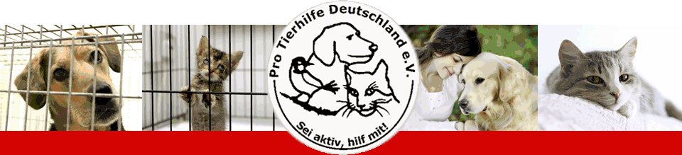 Pro Tierhilfe Deutschland e.V.